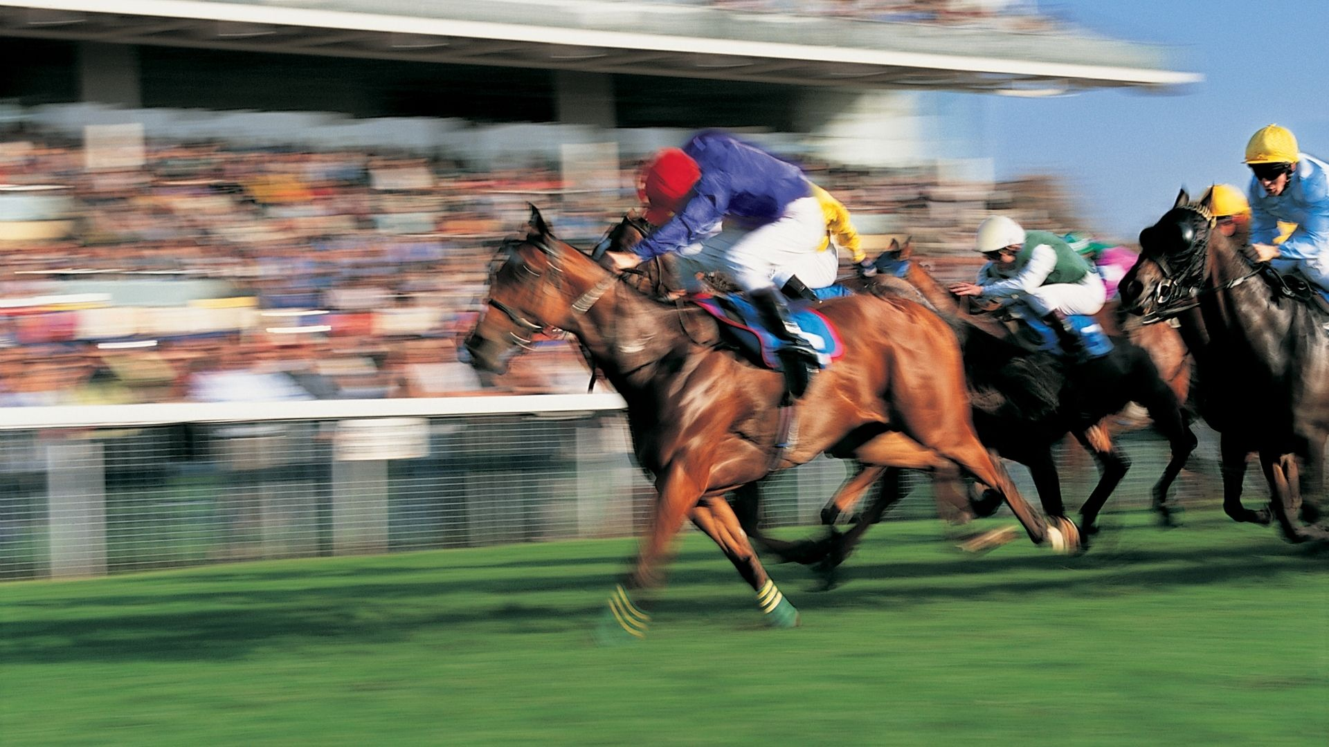 When Can We Expect Horse Racing To Return To Normal Seethru